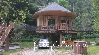rumah pohon01