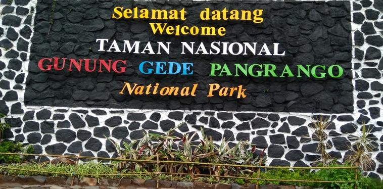 """Tektok"" Hiking: Mt. Pangrango (3.019mdpl)"